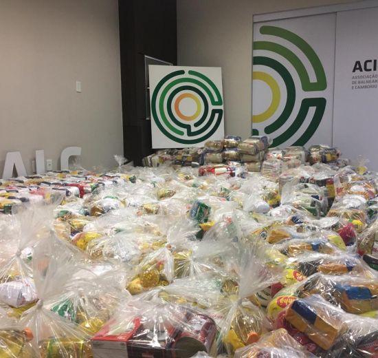 Ação Internucleos de Cooperativas arrecada 10 toneladas de alimentos durante campanha do Dia C